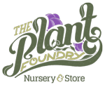 plant-foundry